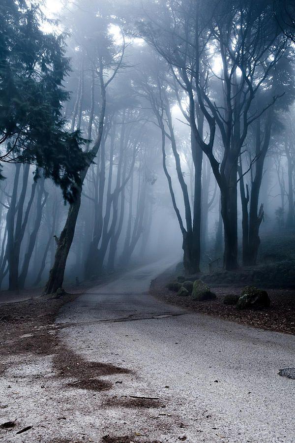 the last path