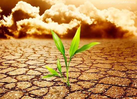 Weathering The Desert Storm